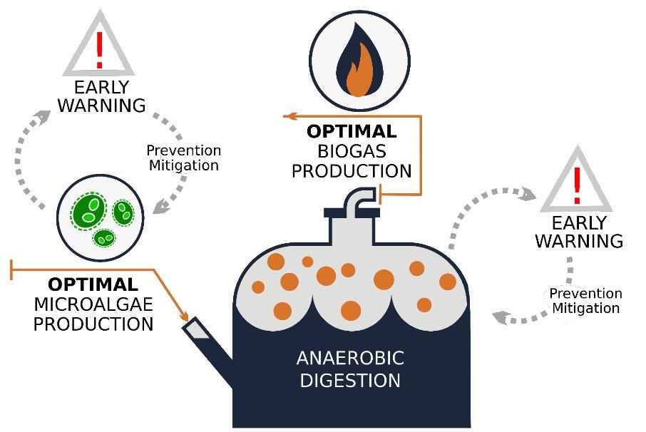 L' objectiu del projecte és accelerar la comercialització de les tecnologies de producció de biogàs a partir de microalgues / ICM-CSIC